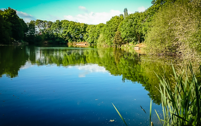 http://thebite.co.uk/wp-content/uploads/2015/06/WhitleyPool2015-TheBite-2.jpg